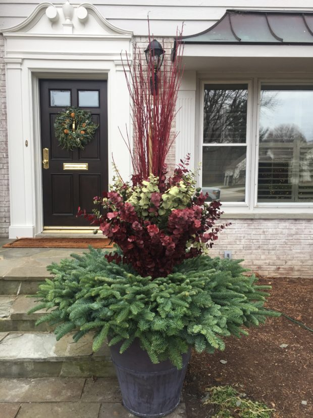 container garden for holidays